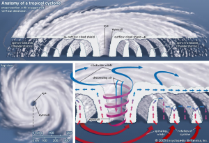 anatomy-of-typhoon
