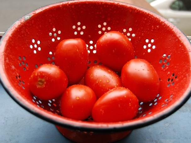 20120621-washed-tomatoes