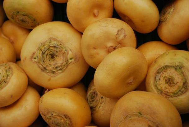 9. Målselvnepe Turnip