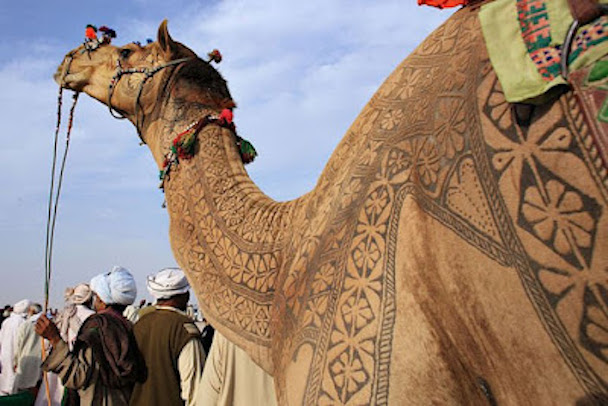 camel_hair_art_picture_01