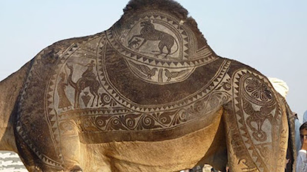 camel_hair_art_picture_06