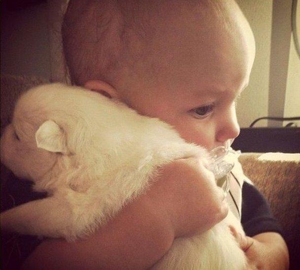 baby-hugs-puppy