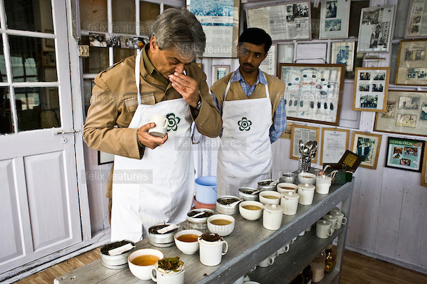 Factory Manager, Sanjay Mukherjee (right) looks on as Rajah Banerjee, the owner of Makaibari Tea Estates is seen tasting different types of teas like First Flush, Bai-mu-Dan, Silver Tips Imperial, Oolong and Second Flush Muscatel during a tea tasting at t
