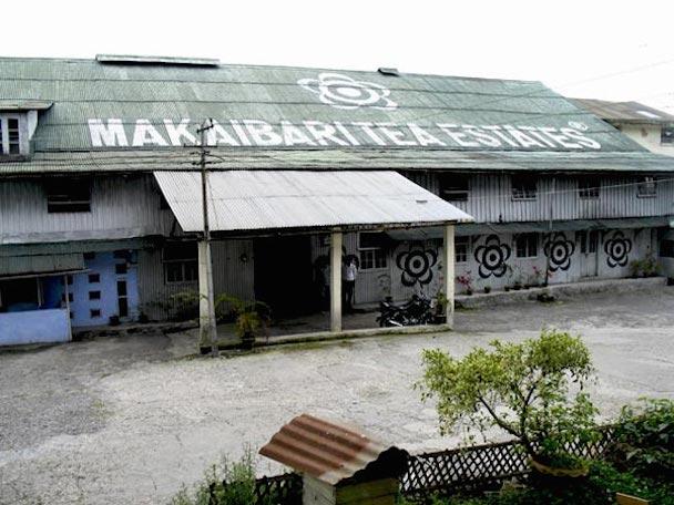 makaibari-factory-600