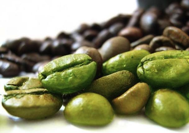green-bean-497x350