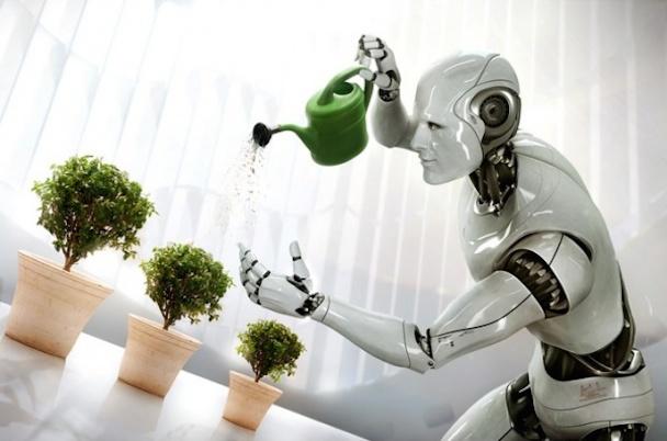 household-robot