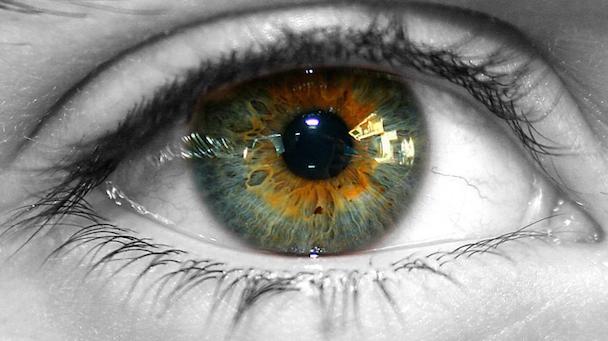 Hazel-Eyes-Color1
