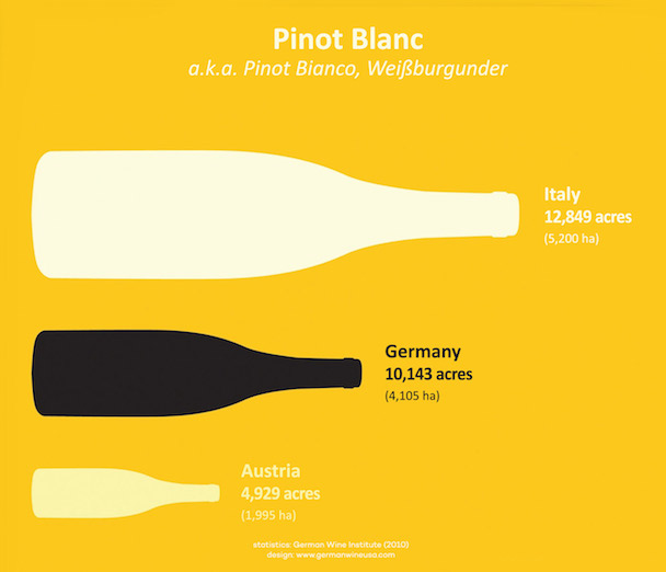 pinot-blanc-top-producers
