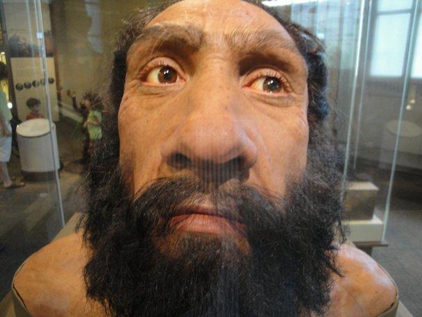 Neanderthal_close