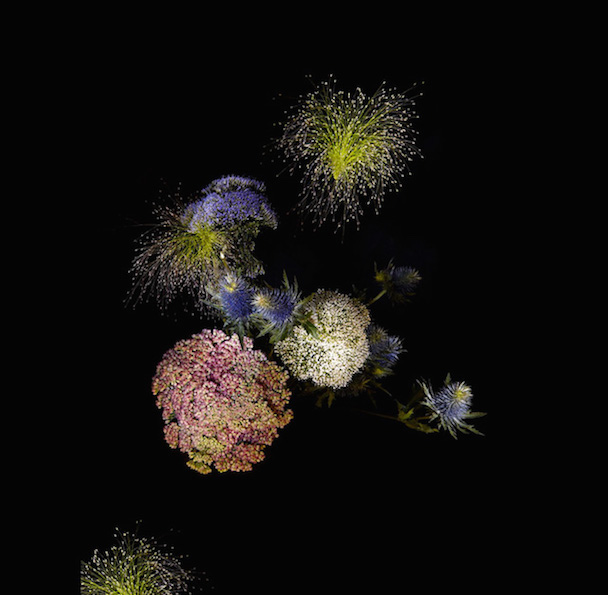 flowerworks-00