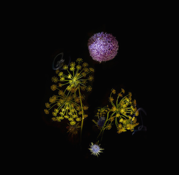 flowerworks-1