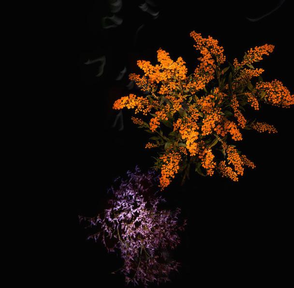 flowerworks-10