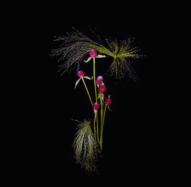flowerworks-6