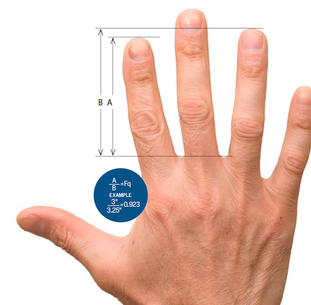 finger-ratio