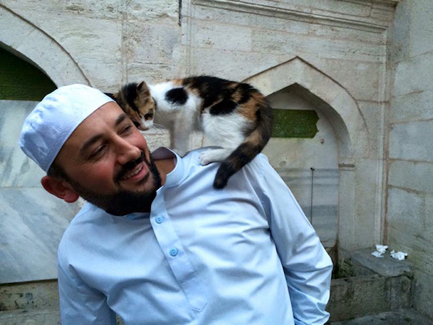 stray-cats-mosque-aziz-mahmud-hudayi-mustafa-efe-istanbul-turkey-1