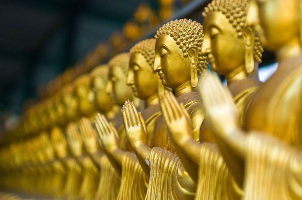 Buddha+rupas_slider